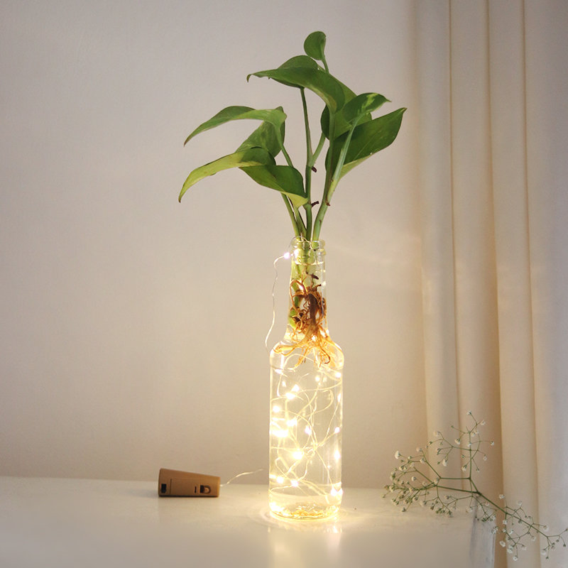 Money Plant Led Bottle : Good Luck