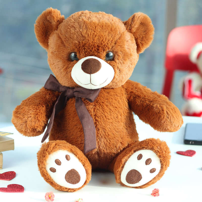 Mr. Cool Teddy Gift for Him/Her