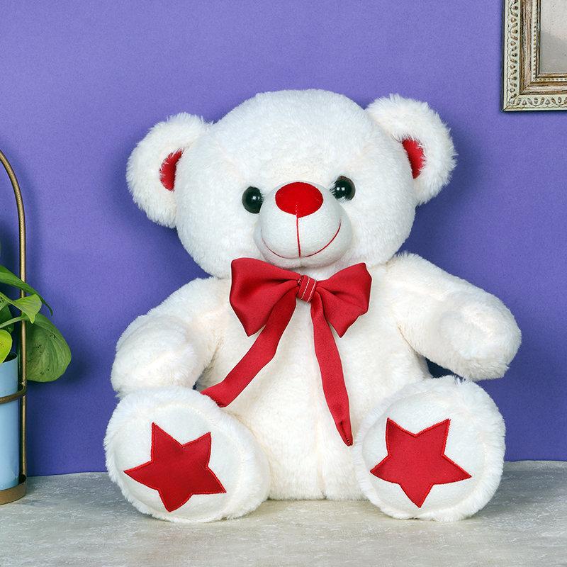 Teddy For Valentine Partner
