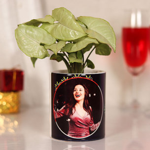 Syngonium Plant in Personalised Mug A New Year