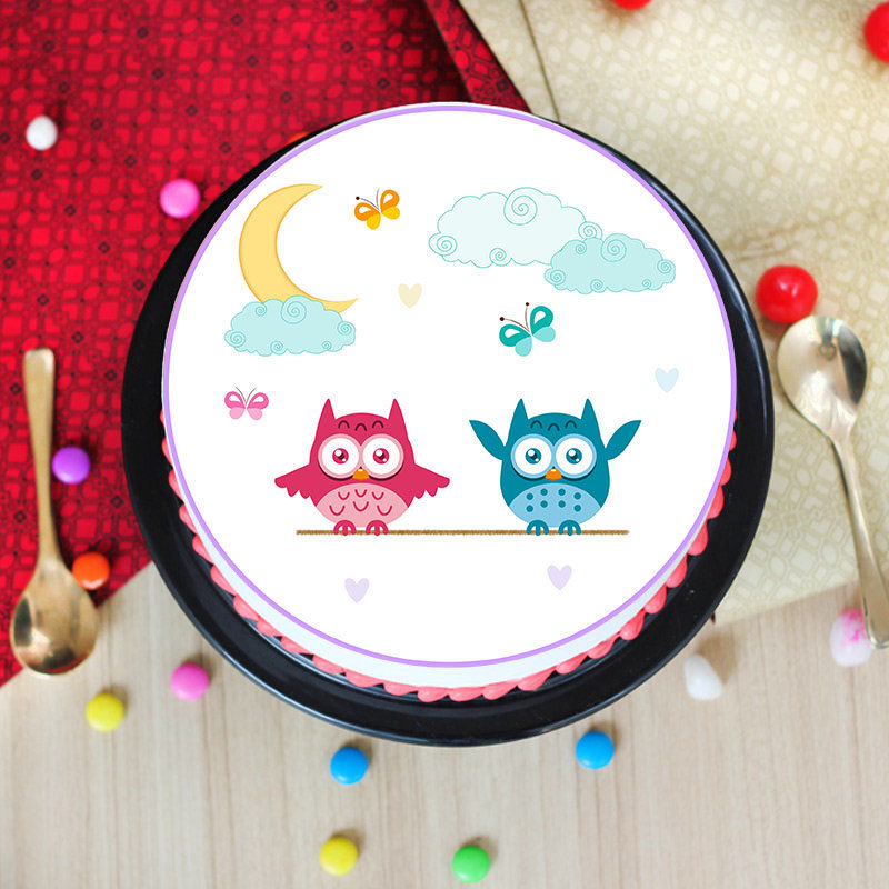 Delicate Pink & Blue Owl Poster Cake