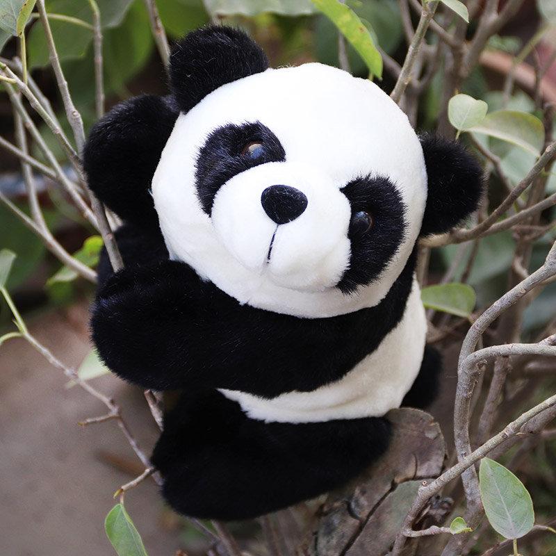 Cute Panda For Wishing Happy Valentine Day