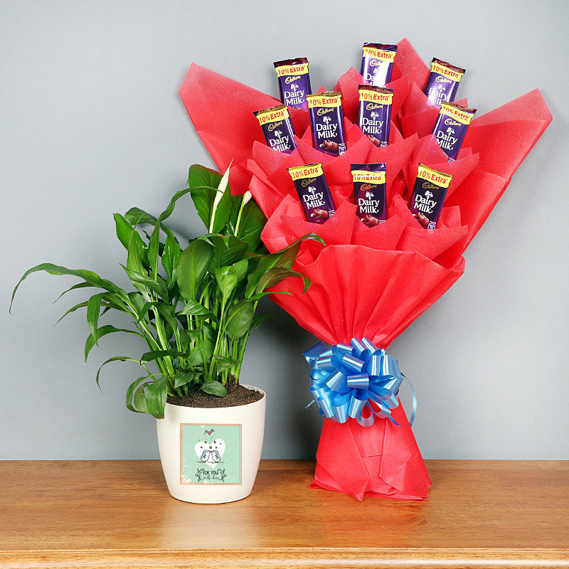 Peace Lily Plant and Perfect Chocolate Bouquet Combo