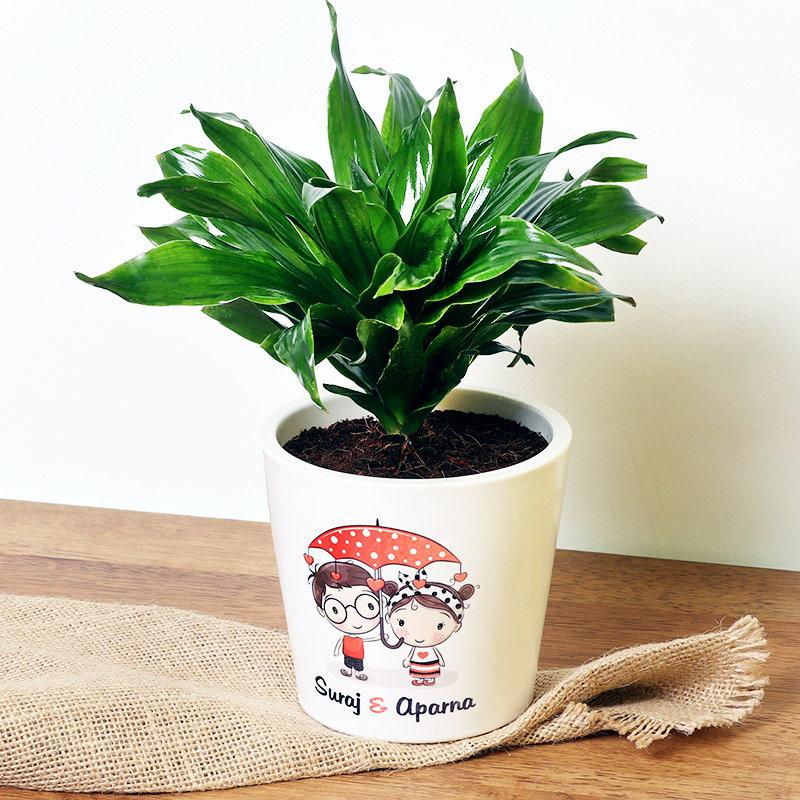 Personalised Love Dracaena Plant