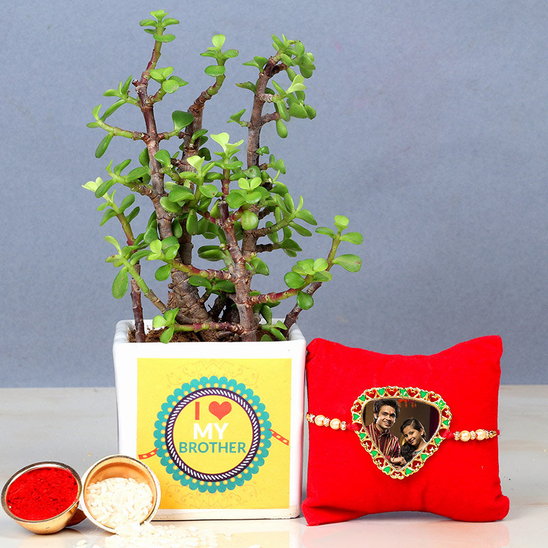 Personalised Rakhi with Jade Plant