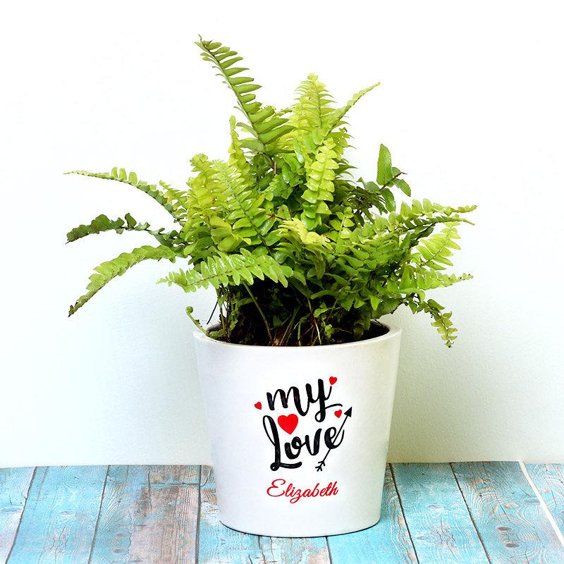 Valentine Gift - Personalised Love Fern Plant