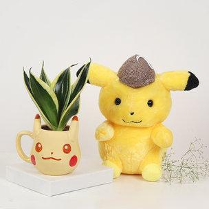 Pikachu Sansevieria Combo : Air Purifying
