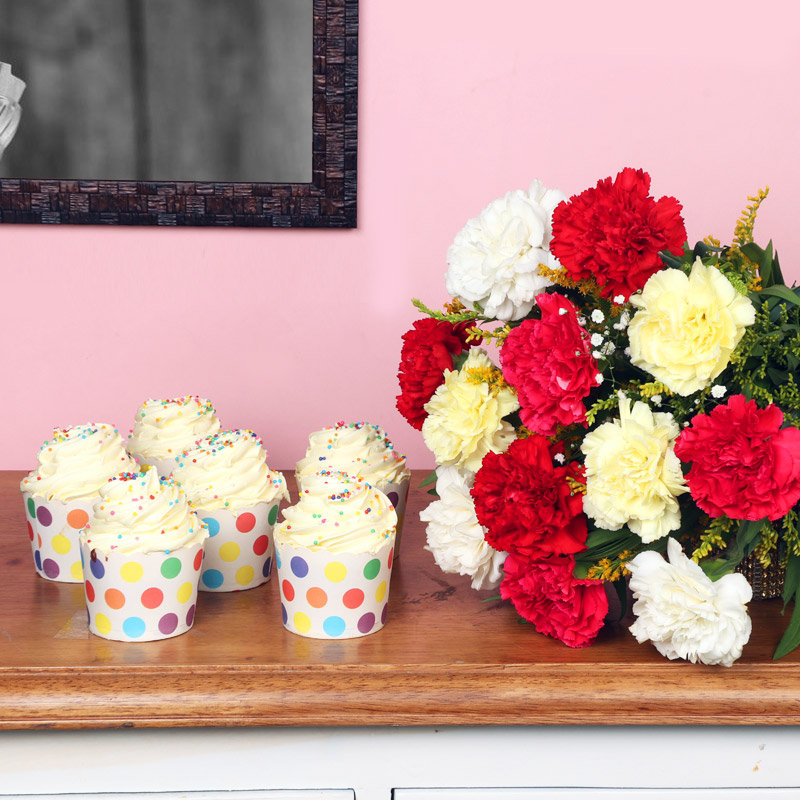 Pretty Carnation Combo - Bunch of 12 Mixed Carnations with 6 Vanilla Cup Cakes