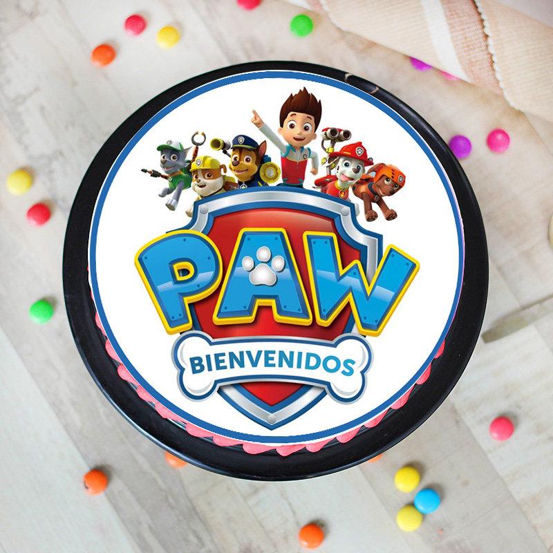 Pretty Paw Patrol Poster Cake