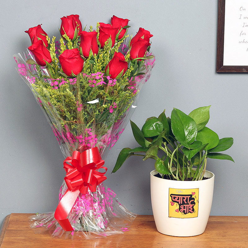 Prosperous Love Combo - Good Luck Plant Indoors in FlowerAura Rhonda Vase with Bunch of 10 Red Roses