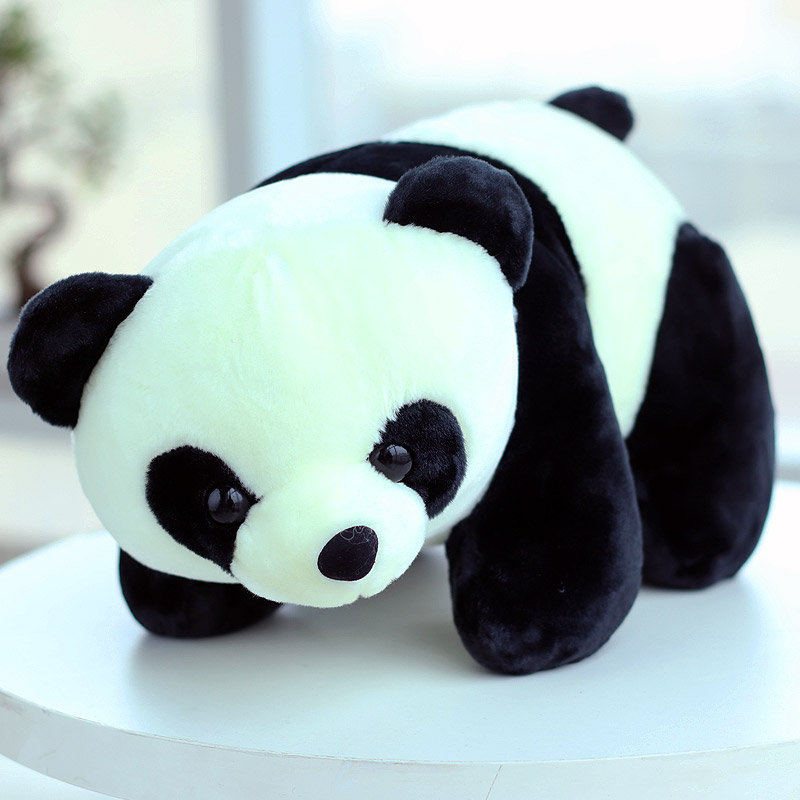 Beautiful Panda