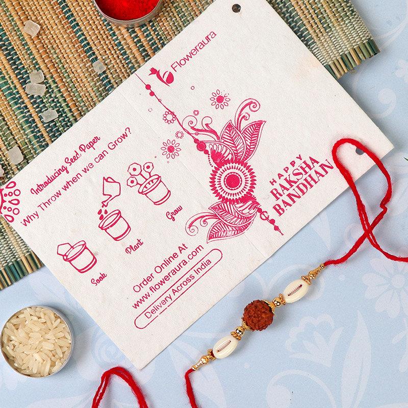 Rakhi Card in Rudraksha Rakhi With Dairy Milk Silk Bars N Bamboo Plant