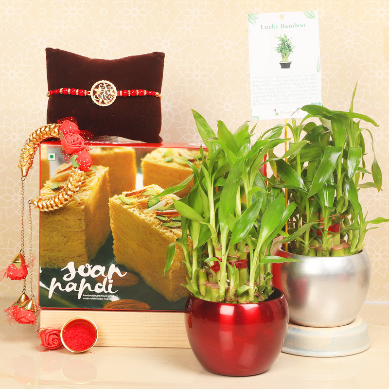 Rakhi Special 2 Layer - Set of Bhaiya Bhabhi Designer Rakhi with Roli and Chawal and Soan Papdi and Good Luck in Orchid Vases