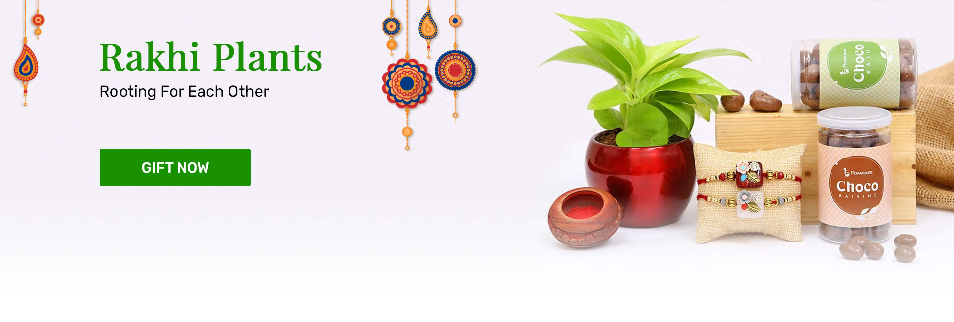 Send Rakhi with plants Online in India