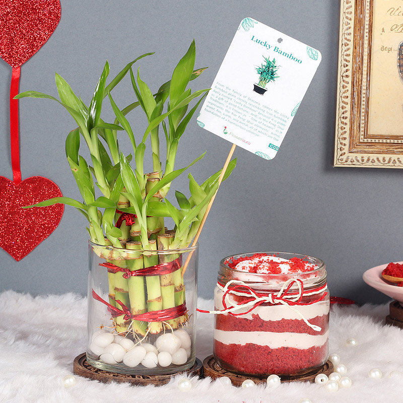 2 Layer Bamboo and Red Velvet Jar Cake Combo