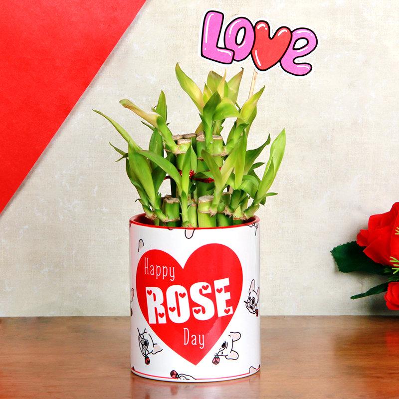 Rose Day Bamboo Love
