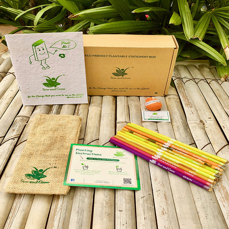 Seed It Out Box