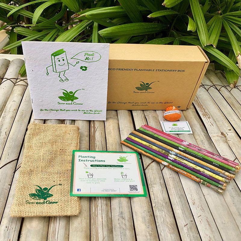 Seed Stationary Box