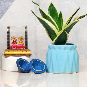 Sensveria Milt Plant And Vase