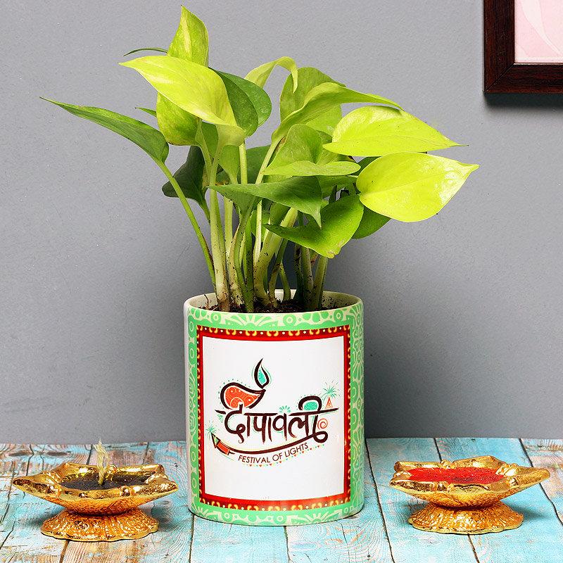 Shubh Money Plant - Good Luck Plant Indoors in Mug Personalized Vase Set of 2 Diyas