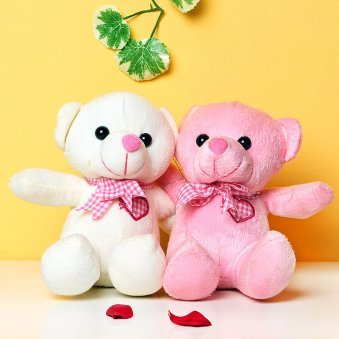 Teddy Day Gifts - Combo of Two Teddies