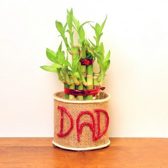 Jute Wrapped Bamboo in Glass Vase for Dad