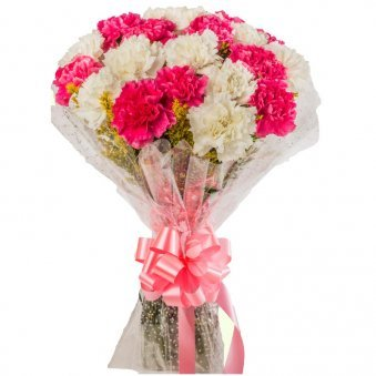 20 Pink and White Carnations Bouquet with Front View