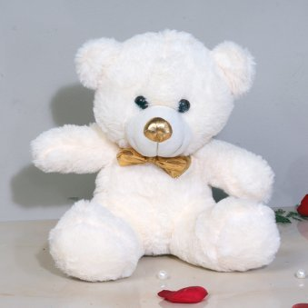 Valentines Teddy Bear Gift with Love Mesages