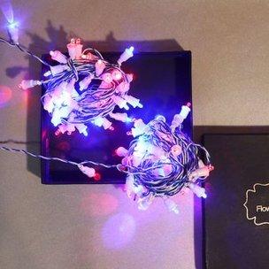 Illuminating LED MultiColour Lights
