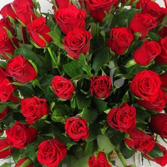 100 Red Roses in Basket with Top View