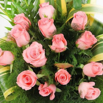 An Arrangement of 25 beautiful Pink Roses with Top View
