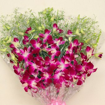 Zoom view of 6 Purple Orchids Bunch - A flower gift of Orchid Special Combo