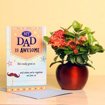 Ixora Plant and Card Combo for Dad