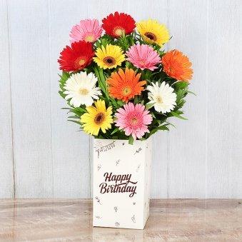 Mixed Color Gerberas in Birthday Box