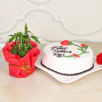 Cake N Bamboo