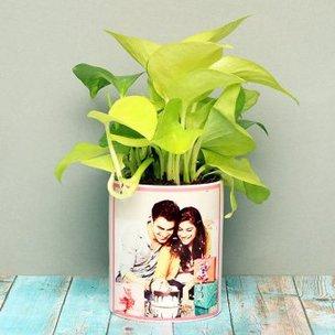 Golden Money Plant in Personalised Birthday Mug