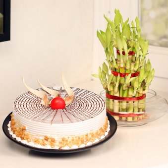 3 Layer Bamboo with Butterscotch Cake Combo