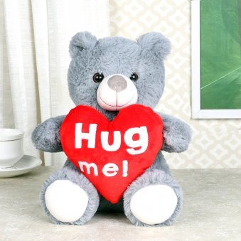 Hug Me Teddy Bear For Valentine Day