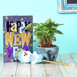 Jovial Syngonium Xmas HNY Combo - Foliage Plant Indoors in Anchor Vase with New Year Greeting Card and One Snowman Pencil