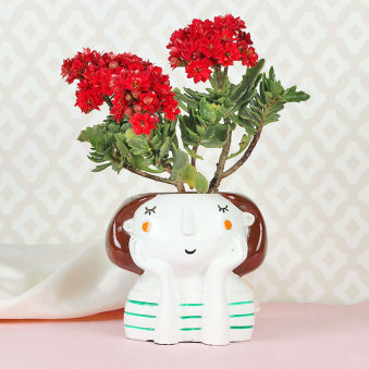 Kalenchoe Girl Plant Vase