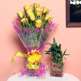 Layering Bamboo Combo - Good Luck Plant Indoors in Square Glass Vase with Bunch of 10 Yellow Roses