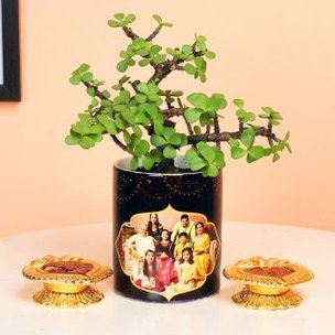 Lucky Luck Jade Plant - Succulent Plant Outdoors in Mug Personalized Vase with Set of 2 Diyas