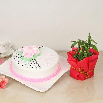 M Day Bamboo Cake Combo