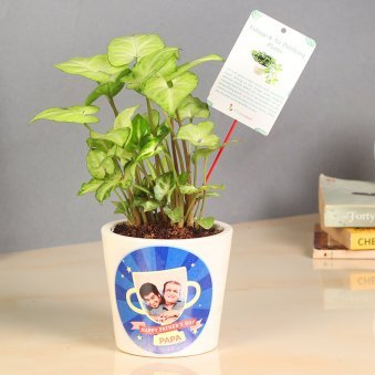 Personalised Plant Gift For Dad