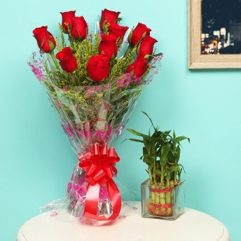 Red Green Charm - Good Luck Plant Indoors in Square Glass Vase with Bunch of 10 Red Roses