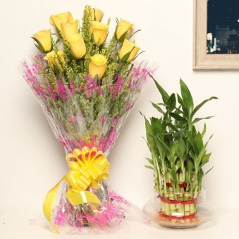 Rose Bamboo Confluence - Good Luck Indoors in Potpuri Vase with Bunch of 10 Yellow Roses