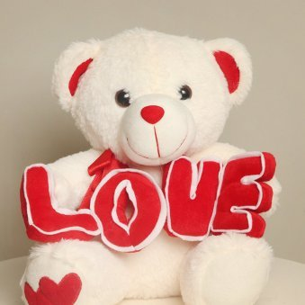 Teddy Bear for Valentine Day