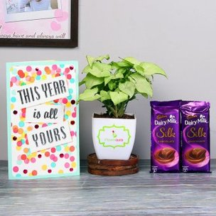 Sweet Green New Year Combo - Foliage Plant Indoors in Blossom Vase with New Year Greeting Card and 2 Dairy Milk Silk Chocolates