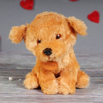 Take Me Home Dog Sot Toy