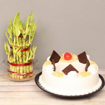 3 Layer Lucky Bamboo with Pineapple Cake Combo